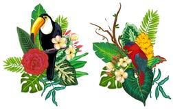 Collection tropicale de vecteur avec les fleurs, les feuilles et les oiseaux exotiques illustration libre de droits
