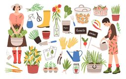 Collection of two female gardeners and gardening tools - watering can, fruit baskets, seeds, pruner, trowel, rubber. Boots, gloves, seedlings, potted plants Royalty Free Stock Photography