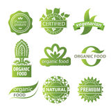 Plant ecological logo Royalty Free Stock Photos