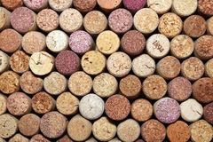 Collection of used wine corks from different varieties of wine. Close-up Royalty Free Stock Photos