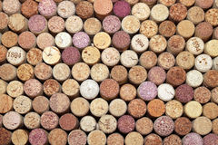 Collection of used wine corks from different varieties of wine. Close-up Stock Images