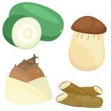 Collection végétale mignonne 04 Images stock