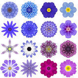 Collection Various Blue Concentric Flowers Isolated on White. Big Collection of Various Blue Concentric Pattern Flowers. Kaleidoscopic Mandala Patterns Isolated Royalty Free Stock Photos