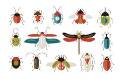 Collection of various colorful geometric insects with wings and antennas isolated on white background - bugs, beetles. Dragonfly, ladybug, cockroach. Cartoon Stock Images