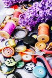 Tools for needlework and lilac branch. Collection of various sewing button,threads and scissors.Sewing accessories Royalty Free Stock Photos
