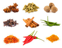 Collection of various spices Stock Photography
