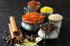 Collection of various spices Royalty Free Stock Photos