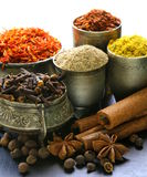Collection of various spices Royalty Free Stock Images