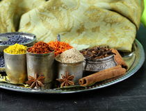 Collection of various spices Stock Image