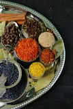 Collection of various spices Royalty Free Stock Image