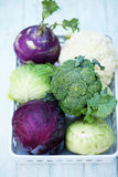 Collection of various types of cabbage Stock Image
