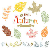Collection of vector autumn leaves. In doodle style Stock Photos
