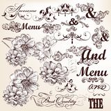 Collection of vector calligraphic and decorative elements in vin Royalty Free Stock Photography