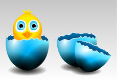 Collection of Vector Chick in Egg and Broken Eggs Stock Images