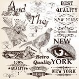 Collection of vector decorative hand drawn and calligraphic elem Royalty Free Stock Photography