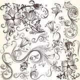 Collection of vector decorative swirls in vintage style for desi Stock Photo