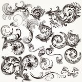 Collection of vector decorative swirls in vintage style Stock Image