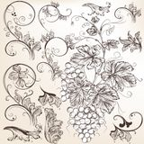 Collection of vector  floral decorative elements Royalty Free Stock Image