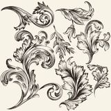 Collection of vector flourishes Stock Photography