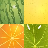Collection of vector fruits textures Royalty Free Stock Image