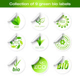 Collection of vector green stickers. Nine elegant  stickers with eco theme Royalty Free Stock Image