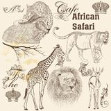 Collection of  vector  hand drawn African animals  in vintage st Royalty Free Stock Images