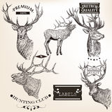Collection of vector hand drawn animals abels in retro style Royalty Free Stock Photos
