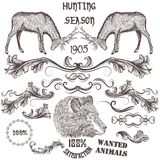 Collection of vector hand drawn animals and floral swirls for de Stock Images