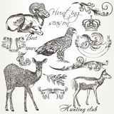 Collection of vector hand drawn animals and flourishes in vintag Royalty Free Stock Photos