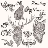 Collection of vector hand drawn animals and swirls Stock Images
