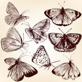 Collection of vector hand drawn butterflies for design Royalty Free Stock Photo