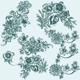 Collection of vector hand drawn floral elements Royalty Free Stock Photography
