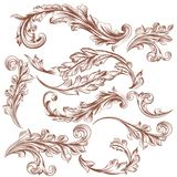 Collection of vector hand drawn floral ornaments for design Royalty Free Stock Photos