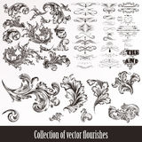 Collection of vector hand drawn flourishes in engraved style. Me Royalty Free Stock Photo