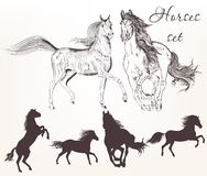 Collection of vector hand drawn horses royalty free illustration