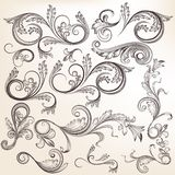 Collection of vector  hand drawn swirl ornaments in vintage styl Stock Photography