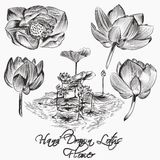 Collection of vector hand drawn vector lotus  flowers Stock Photo