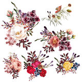 Collection of vector high detailed flowers in realistic style fo Royalty Free Stock Image