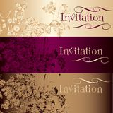 Collection of vector invitation cards in vintage style Stock Images