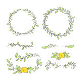 Collection with vector labels and frames. Set of a sketch vignette as branch with leaves and lemons for decoration of invitations, texts, cards, etc Royalty Free Stock Images