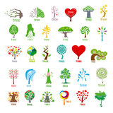 Collection of vector logos stylized tree. Biggest collection of vector logos stylized tree Stock Photo