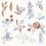 Collection of vector realistic flowers wedding design. Collection of vector realistic flowers for wedding design Royalty Free Stock Image