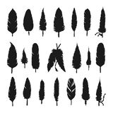 Collection of vector silhouette feathers Stock Photos