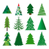 Collection of vector spruce Royalty Free Stock Photography