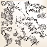 Collection of vector swirl flourishes for design Stock Image