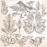 Collection of vector swirls and floral Stock Images