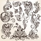 Collection of vector swirls in vintage style  for design Royalty Free Stock Photos