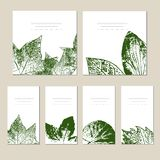 Collection of vector template label, visit cards, square greeting cards and banners with home plants, wild flowers and stock illustration