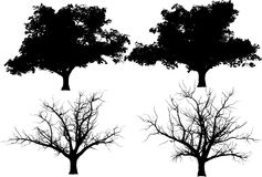 Collection vector trees Royalty Free Stock Images
