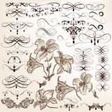 Collection of vector vintage calligraphic elements and page deco Royalty Free Stock Image